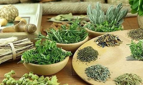 Различные травяные сборы в отдельных мисках