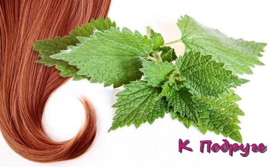 Пучок волос и зеленые листья