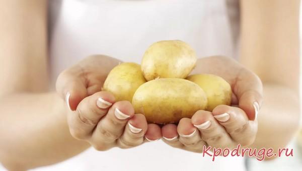 Молодой картофель в руках